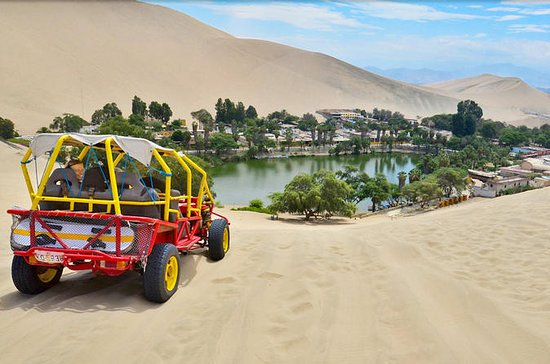 Paracas and Huacachina from Lima with...