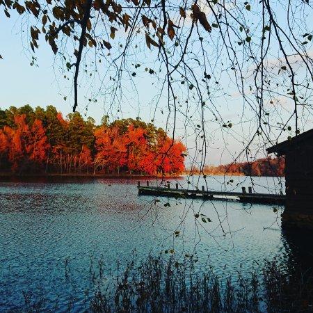 Fayetteville, AR: Lake Wedington