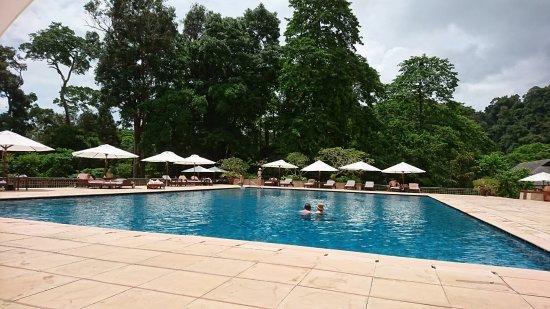 The Datai Langkawi: 静かな大人なプール