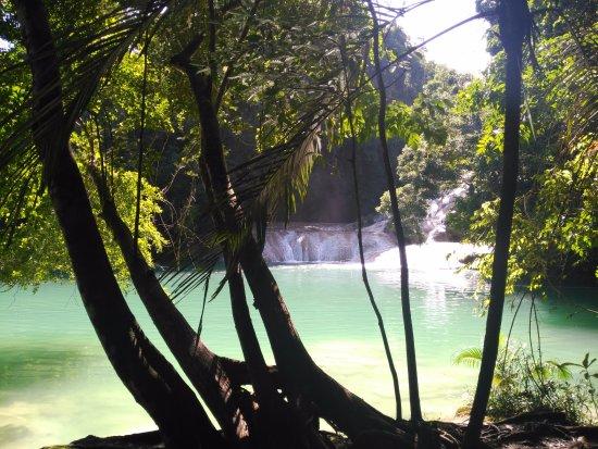 Cascada de Roberto Barrios: Varias cascadas a lo largo del recorrido