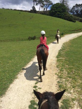Horse Riding Warkworth : photo1.jpg