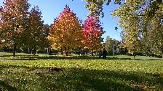 Bosco di Legnano (Parco Castello)
