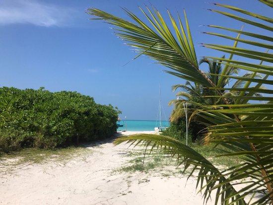 Haa Alif Atoll: photo5.jpg