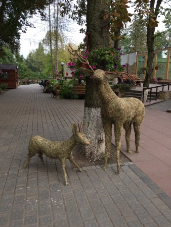 Lutsk, Ukraina: photo6.jpg