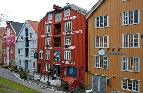 havfruen restaurant trondheim norsk sexcam