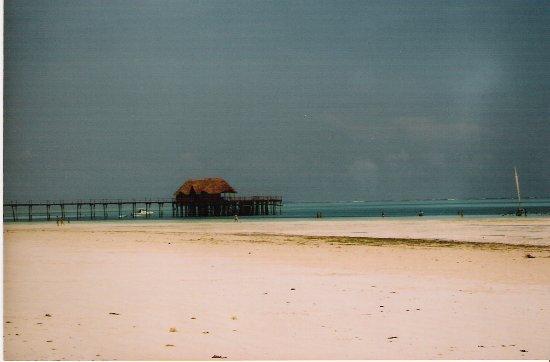 Zanzibar Island, Tanzania: Kiwengwa