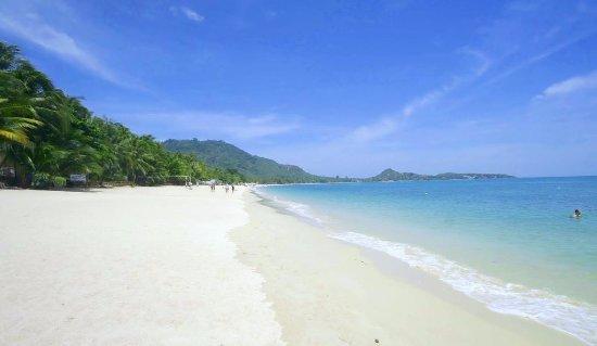 Der schöne Strand bei Lamai Inn 99