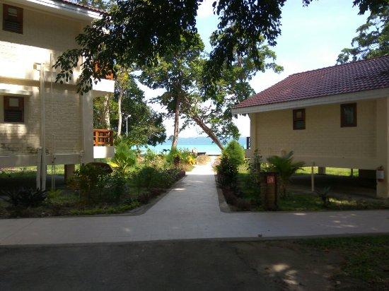 Dolphin Resort: IMG_20171103_102102_large.jpg