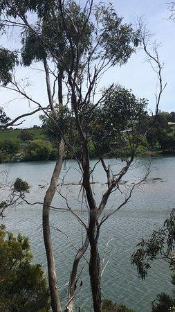 Devonport, Austrália: photo5.jpg