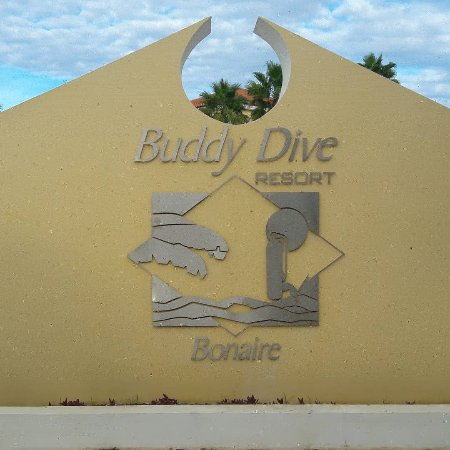 Buddy Dive Foto