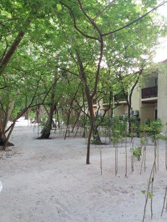 Biyadhoo Island Resort: Le nostre camere essenziali .....ma pulitissima e piedi nella sabbia da subito.