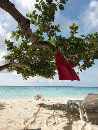 Biyadhoo Island Resort: angolo relax..