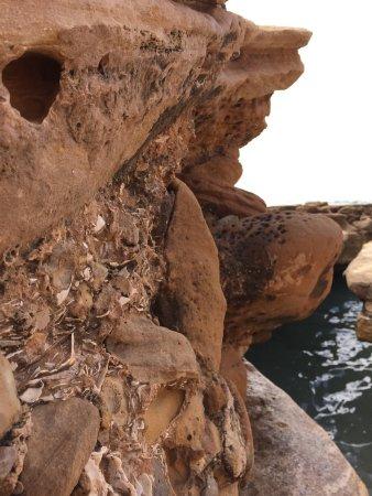 Taghazout Beach: photo3.jpg