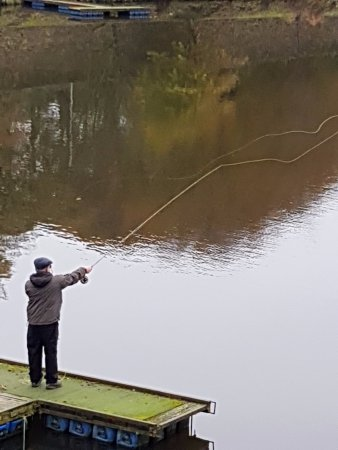 Bolton, UK: This Fisherman was fortunate enough to move to various locations around the lake.