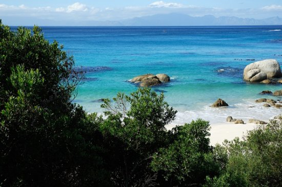 A Trip to Cape Town: The South African Capital Where You