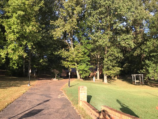 Hernando, MS: lots of trees and green