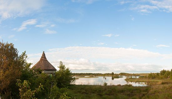 County Offaly, Irlande : The Bird Hide overlooking Tumduff Beag