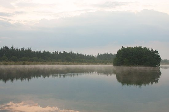 County Offaly, Irland: Finnamores Lake early in the morning