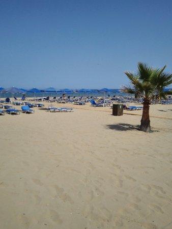 Hotel Delfina Beach Photo