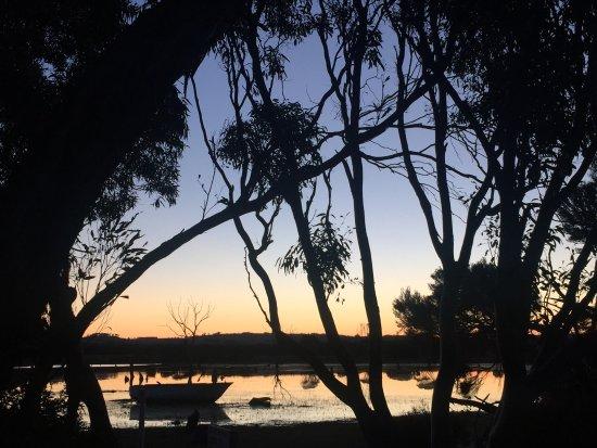 คิงส์คอต, ออสเตรเลีย: photo4.jpg