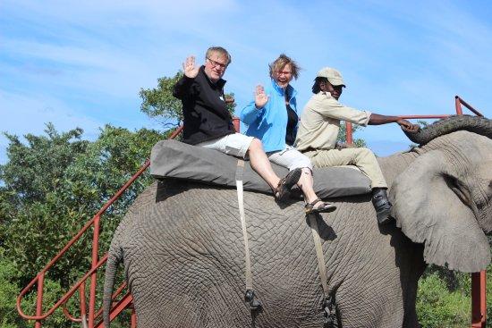Komatipoort, Sydafrika: Elephant Safari