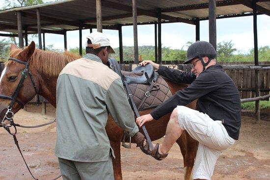 Komatipoort, Güney Afrika: Horse back safari