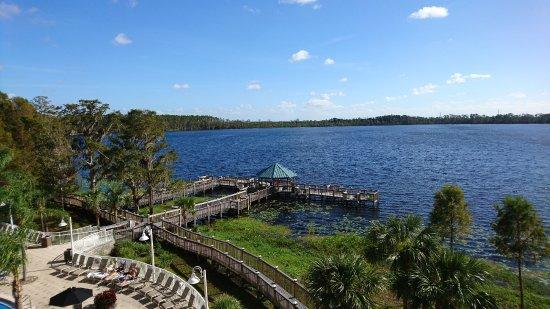 Blue Heron Beach Resort Orlando Reviews