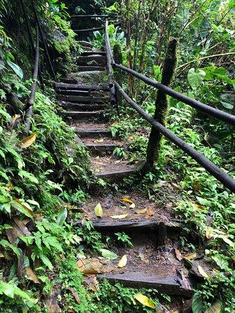 how to get to nauyaca waterfalls
