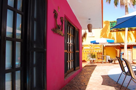 Leo's Baja Oasis-bild