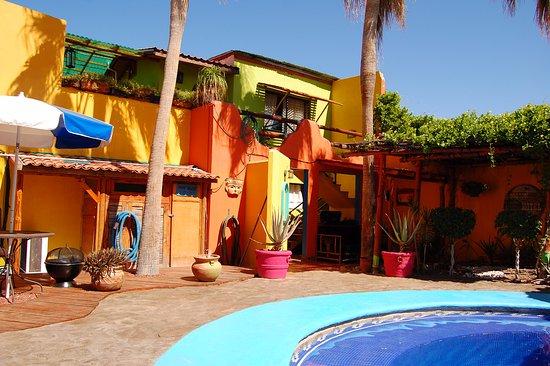Leo's Baja Oasis照片
