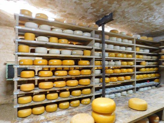 Dublin, TX: Cheese room