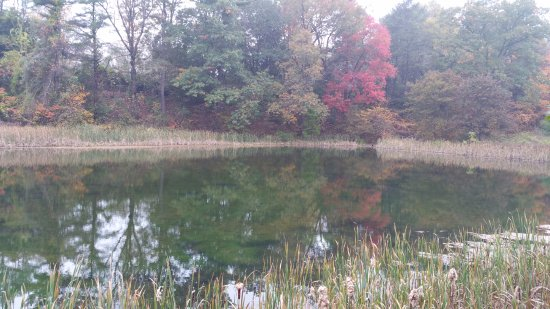 Greenfield, MA: Highland Pond on dirt road behind Brandt House.