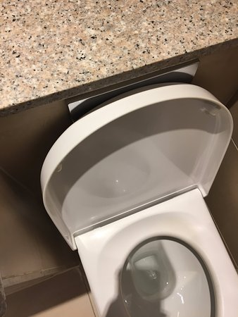 Mercure London Bloomsbury: Flush in awkward position