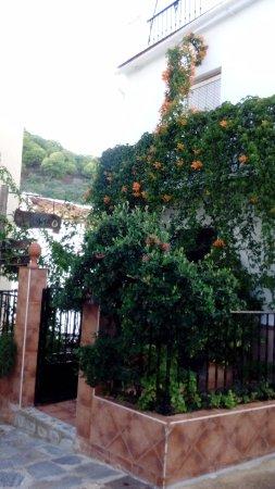 Rincón de Igualeja