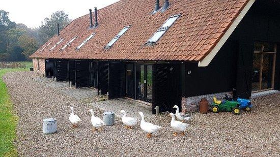 Tubbergen, Países Bajos: photo1.jpg