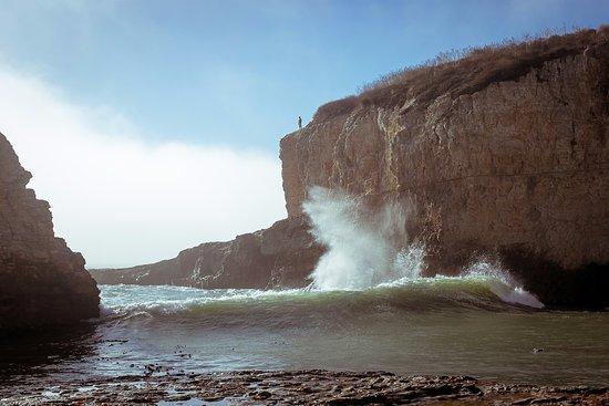 Davenport, Californië: Shark Fin Cove