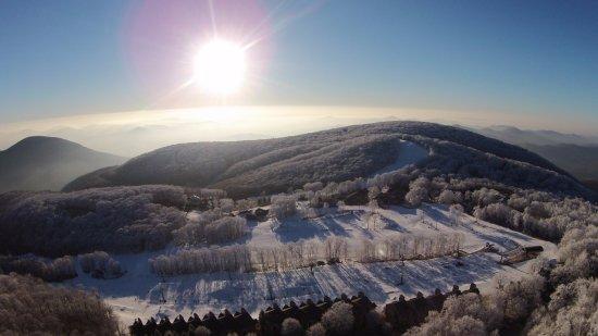 wintergreen resort updated 2017 reviews amp price