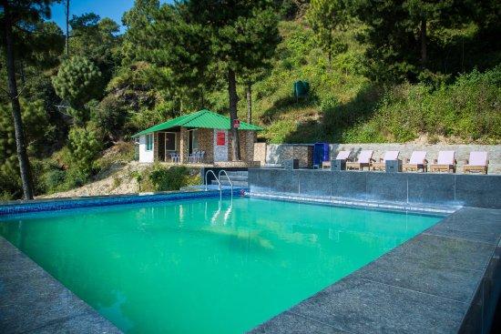 Infinity Pool View Picture Of Blue Pine Resort Lansdowne Tripadvisor