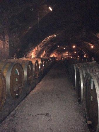 Geisenheim, ألمانيا: Der alte Weinkeller