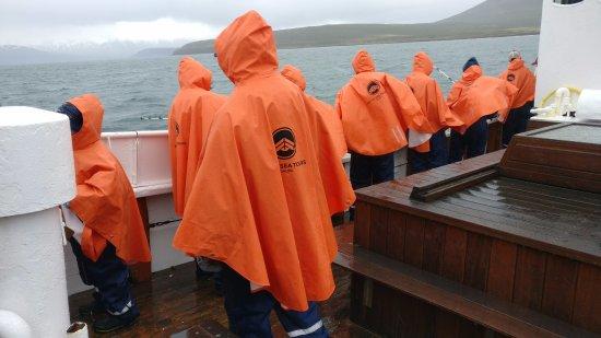 Dalvik, Iceland: la bateau en tenu