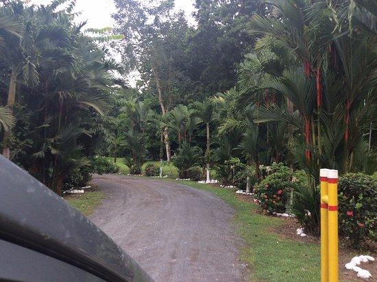 Guapiles, Kostaryka: Entrada