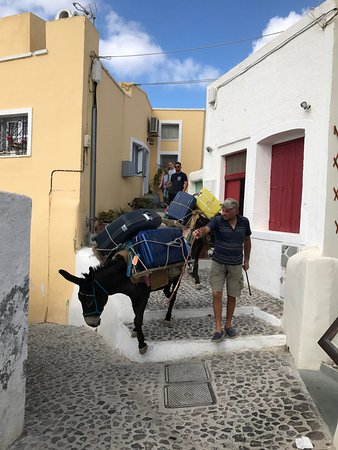Zannos Melathron Hotel: Donkey service to carry luggage up and down the hill