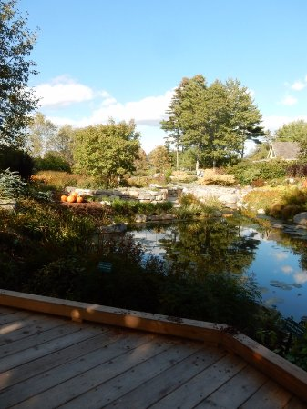 Coastal Maine Botanical Gardens: Pond view