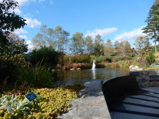 Coastal Maine Botanical Gardens: Fountain