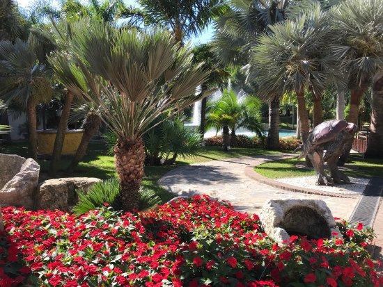 Many fountains picture of jardin botanico molino de inca for Jardin botanico torremolinos