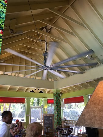 Sunshine Grill: That's a big fan!