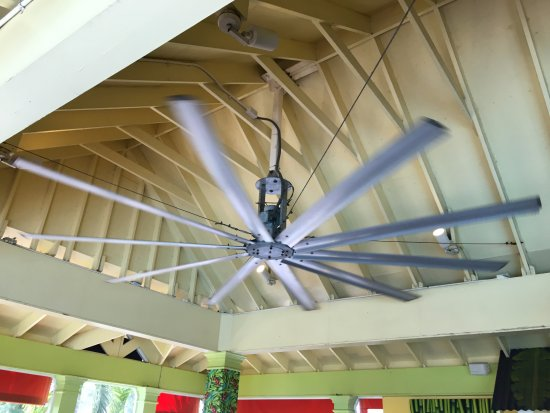 Sunshine Grill: The fan again. So big you need to see it twice