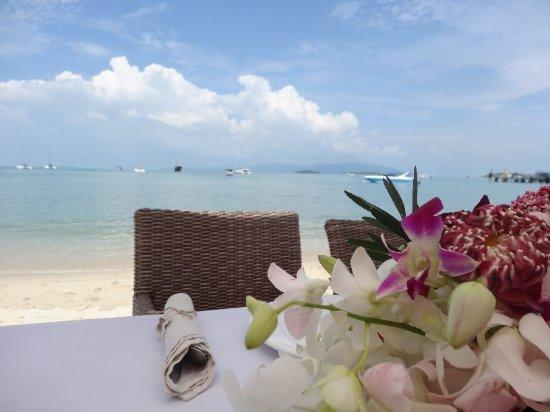 Secret Garden Beach Resort: DSC06982_large.jpg