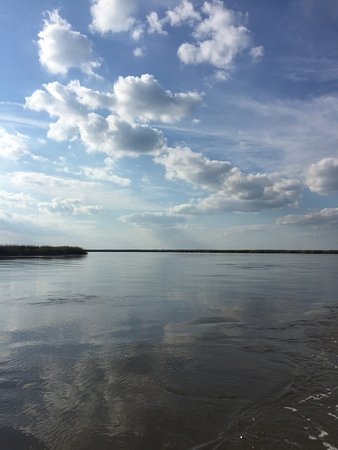 Saint Simons Island, GA: photo1.jpg