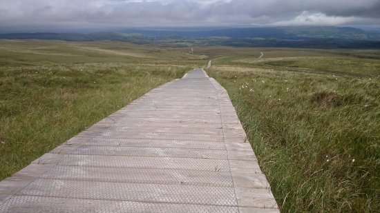 Cuilcagh Legnabrocky Trail: wooden footpath